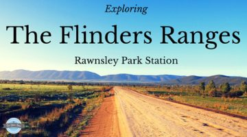 Checking out Rawnsley Park and The Flinders Ranges