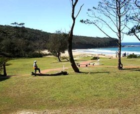Considering Camping Where To Camp In Nsw Gee You Re Brave Tents At Pebbly Beach Campground Yuraygir National